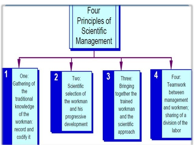 taylors scientific management theory Scientific management (also called taylorism, the taylor system, or the classical perspective) is a theory of management that analyzes and synthesizes workflow processes, improving labor productivity the core ideas of the theory were developed by frederick winslow taylor in the 1880s and 1890s, and were first published in his monographs, shop management (1905) and the principles of scientific.