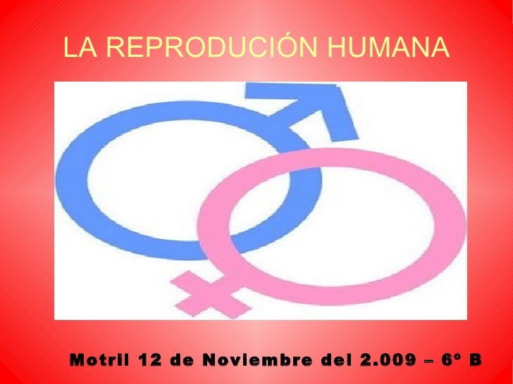 LA REPRODUCIÓN HUMANA <ul><ul><li>Motril 12 de Noviembre del 2.009 – 6º B </li></ul></ul>