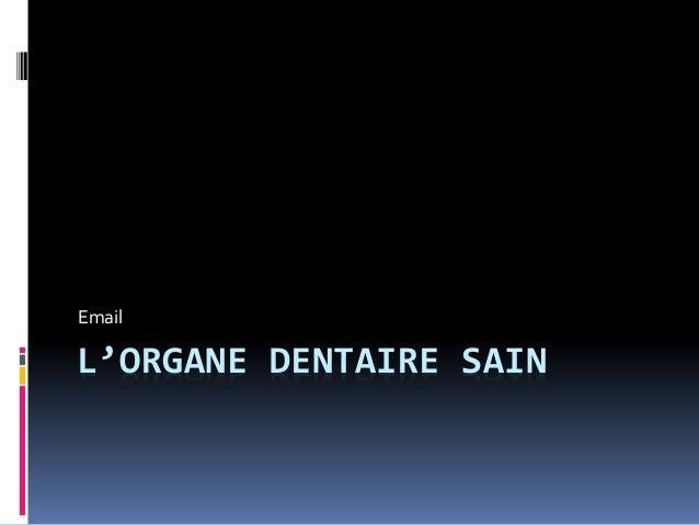 Email  L'ORGANE DENTAIRE SAIN