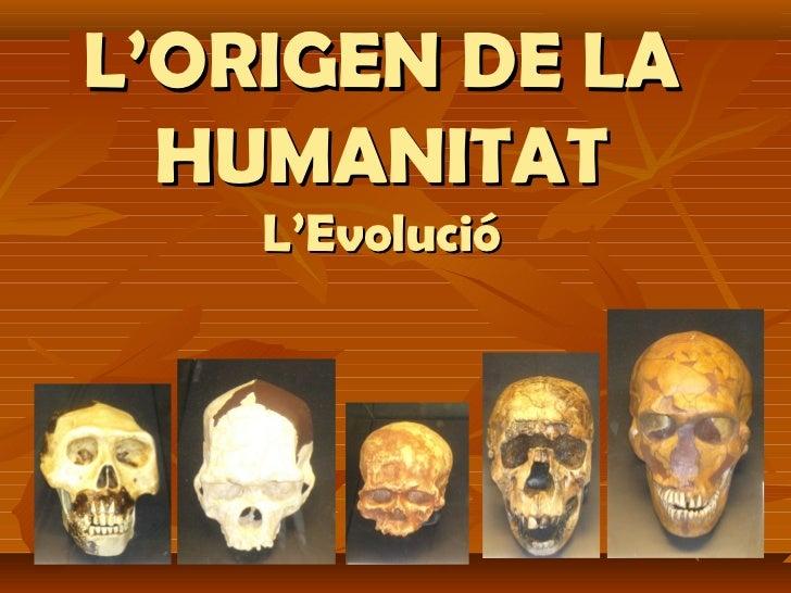 L'ORIGEN DE LA  HUMANITAT    L'Evolució