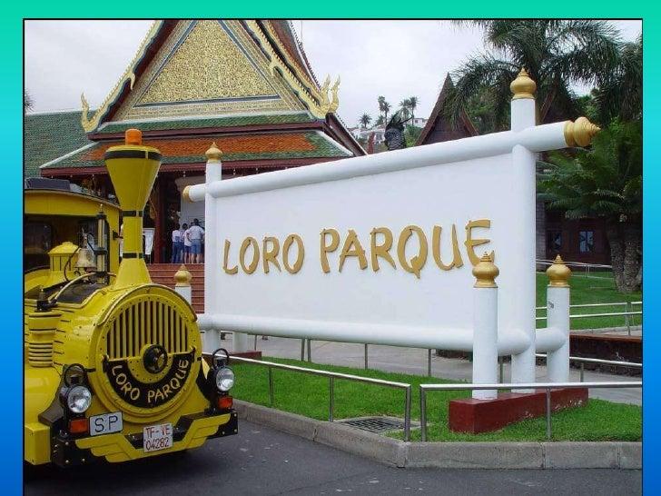 Loro parque Tenerife (nx power lite)