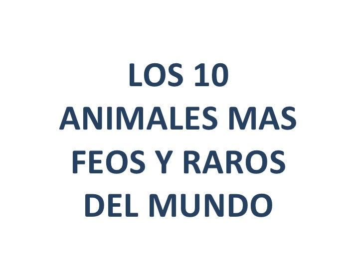 Los 10 Animales MáS Feos