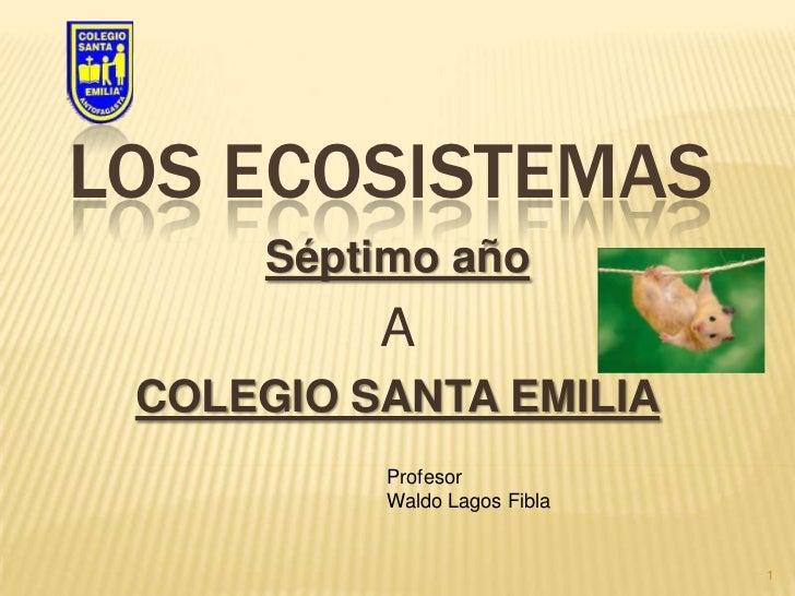 Los ecosistemas<br />Séptimo año <br />A<br />COLEGIO SANTA EMILIA<br />1<br />Profesor<br />Waldo Lagos Fibla<br />