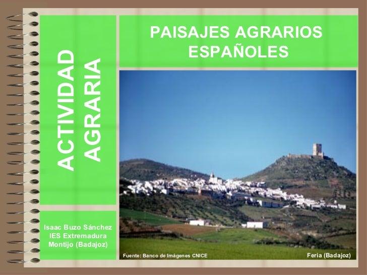 PAISAJES AGRARIOS                                   ESPAÑOLES  ACTIVIDAD   AGRARIAIsaac Buzo Sánchez  IES Extremadura  Mon...