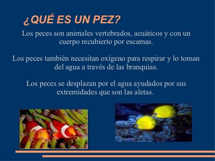 Los peces for Peces que no necesitan oxigeno