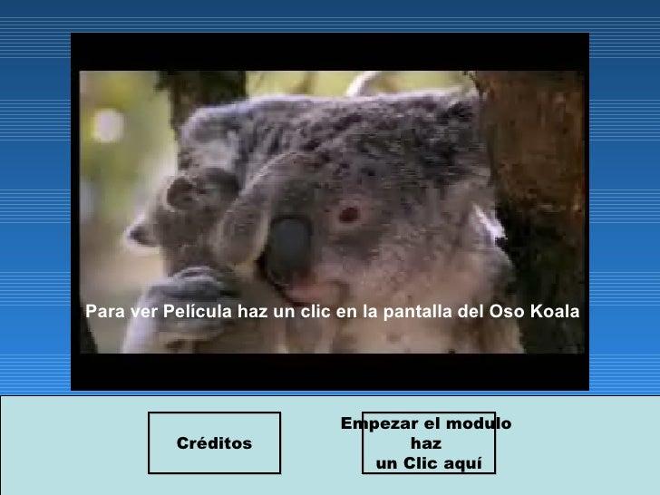 Para ver Película haz un clic en la pantalla del Oso Koala Empezar el modulo  haz  un Clic aquí Créditos