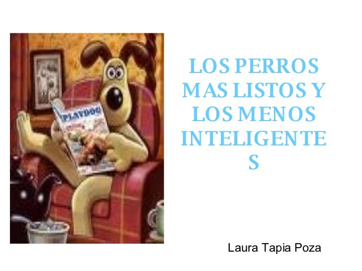 LOS PERROS MAS LISTOS Y LOS MENOS INTELIGENTES Laura Tapia Poza