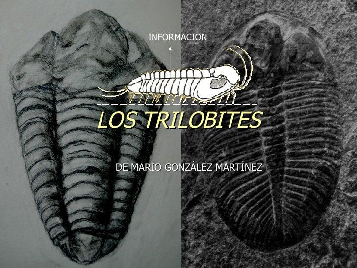 DE MARIO GONZÁLEZ MARTÍNEZ LOS TRILOBITES INFORMACION