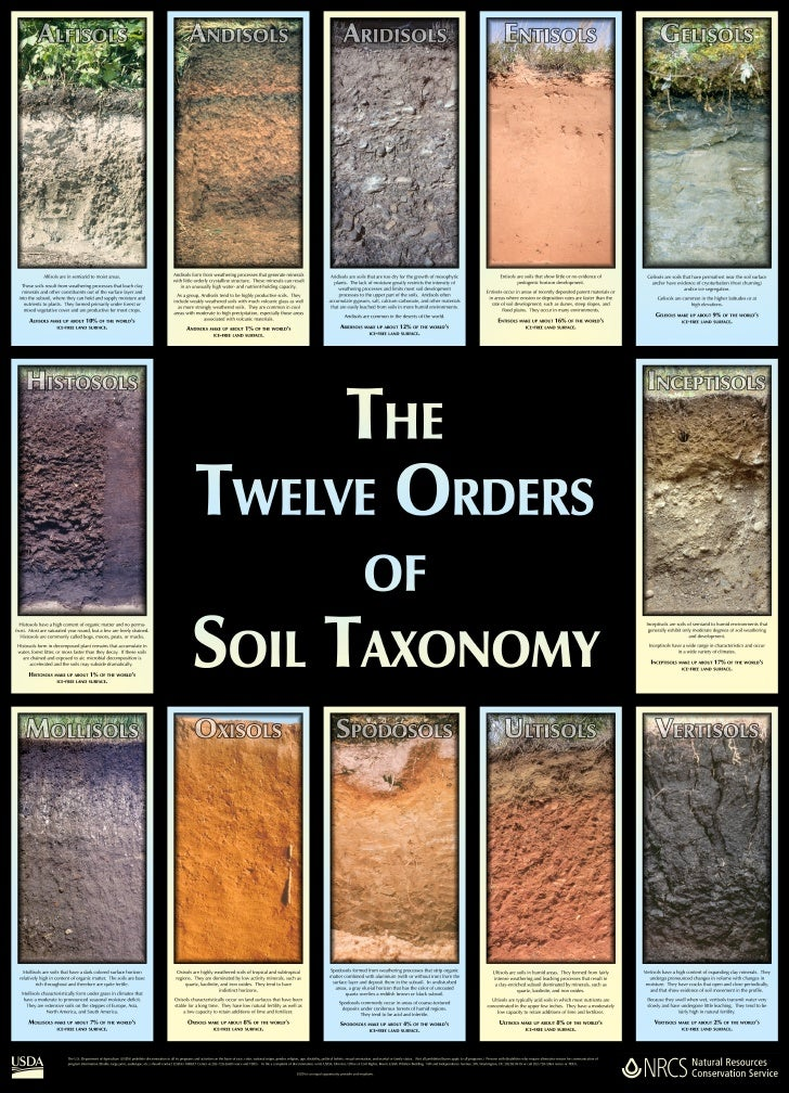 Essay On Types Of Soil In India