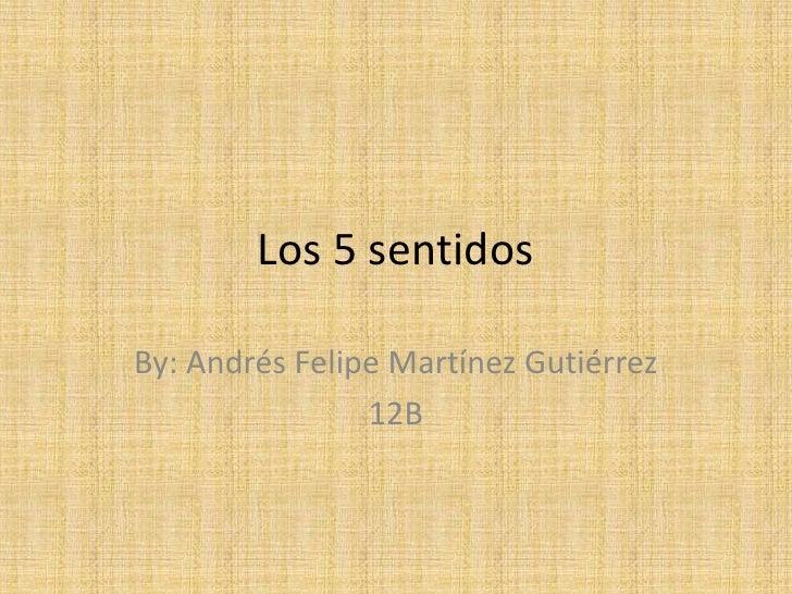 Los 5 sentidos<br />By: Andrés Felipe Martínez Gutiérrez<br />12B<br />