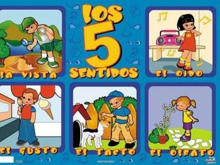 Los 5 sentidos for El divan de los sentidos