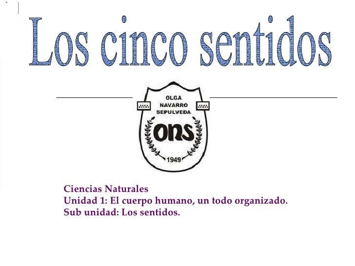 Los cinco sentidos Ciencias Naturales Unidad 1: El cuerpo humano, un todo organizado. Sub unidad: Los sentidos.