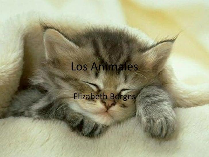 Los Animales Elizabeth Borges
