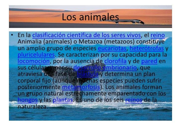 Los animales<br />En la clasificación científica de los seres vivos, el reino Animalia (animales) o Metazoa (metazoos) con...