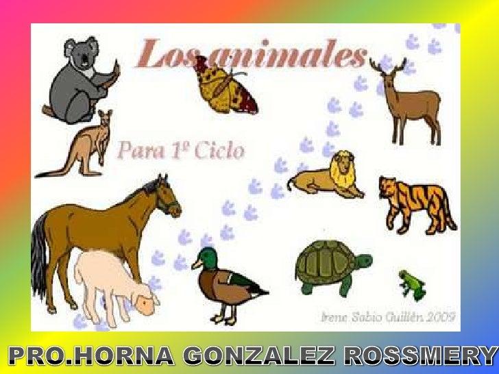 PRO.HORNA GONZALEZ ROSSMERY<br />