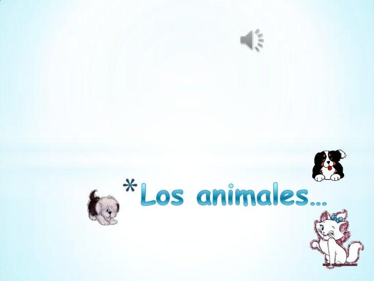Los animales acuáticos presentan características propiasde su adaptación al medio ambiente en que sedesarrollaron. Dentro ...