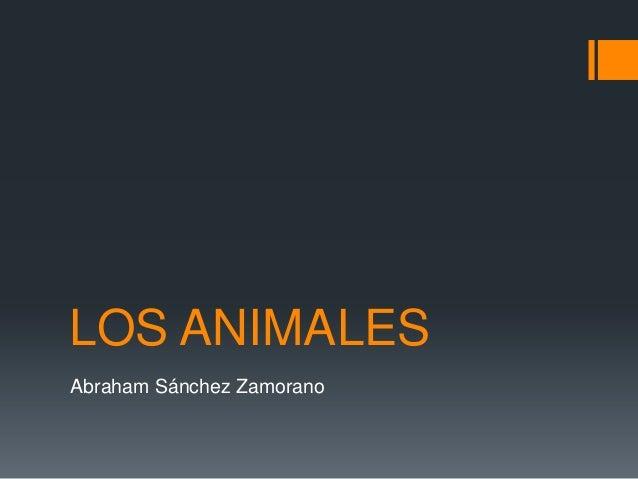 LOS ANIMALES Abraham Sánchez Zamorano