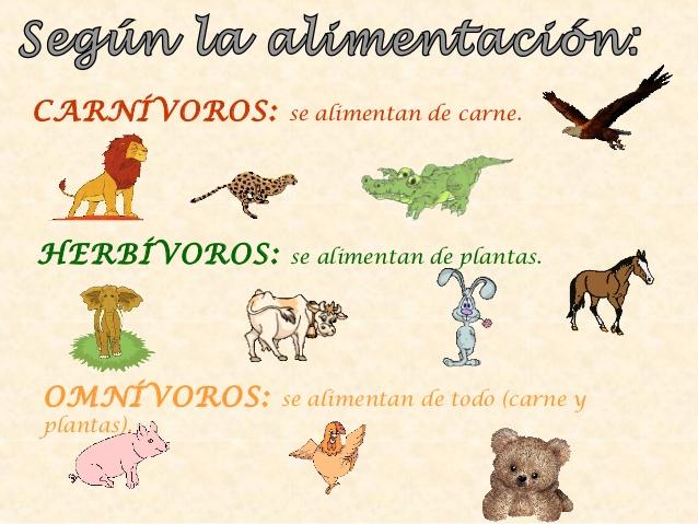 los-animales-2-e-primaria-4- ...