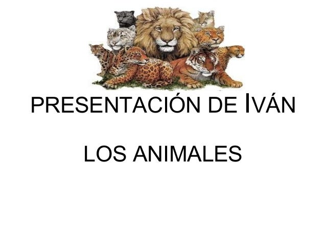PRESENTACIÓN DE IVÁN LOS ANIMALES