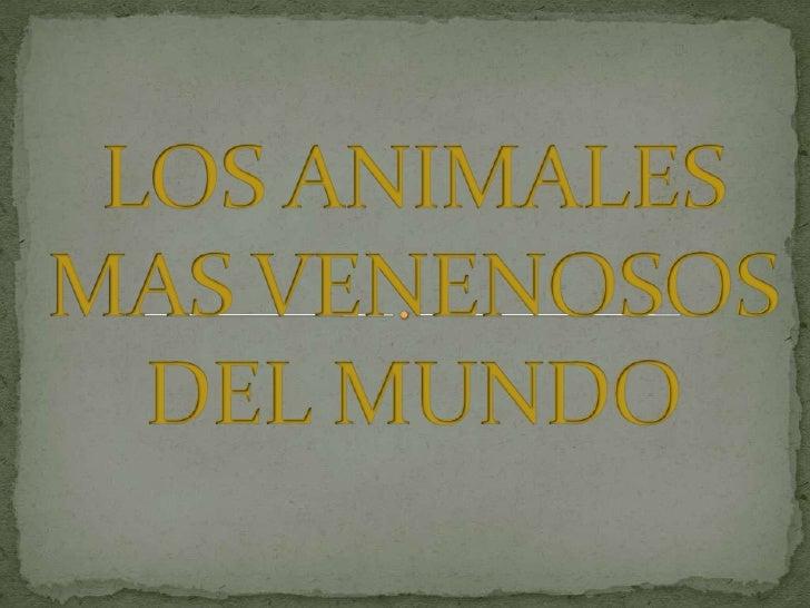 LOS ANIMALES MAS VENENOSOS DEL MUNDO<br />