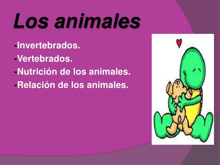 Losanimales<br />-Invertebrados.<br />-Vertebrados.<br />-Nutrición de los animales.<br />-Relación de los animales.<br />