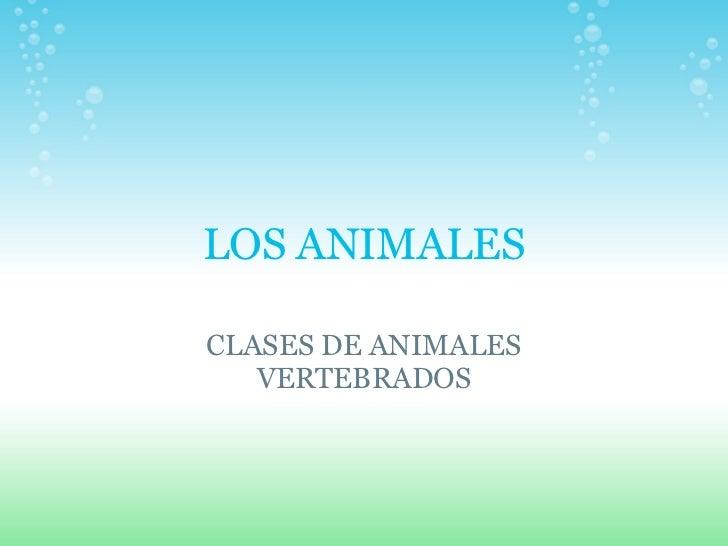LOS ANIMALES CLASES DE ANIMALES VERTEBRADOS