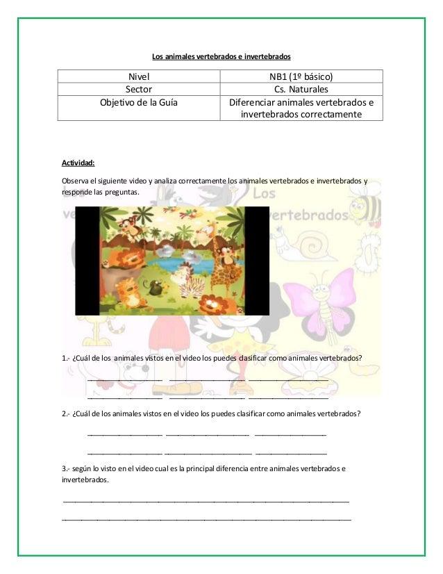 Los animales vertebrados e invertebradosNivel NB1 (1º básico)Sector Cs. NaturalesObjetivo de la Guía Diferenciar animales ...