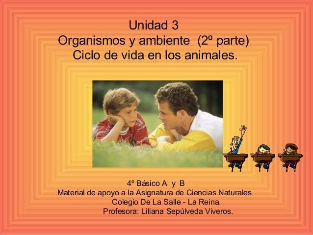 Unidad 3 Organismos y ambiente (2º parte) Ciclo de vida en los animales. 4º Básico A y B Material de apoyo a la Asignatura...