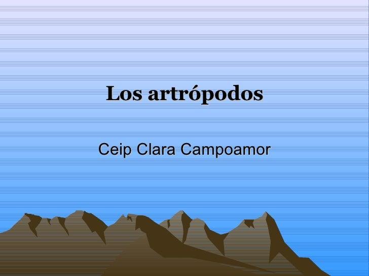 Los artrópodos Ceip Clara Campoamor