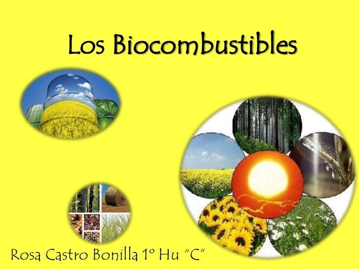 """Los Biocombustibles<br />Rosa Castro Bonilla 1º Hu """"C""""<br />"""