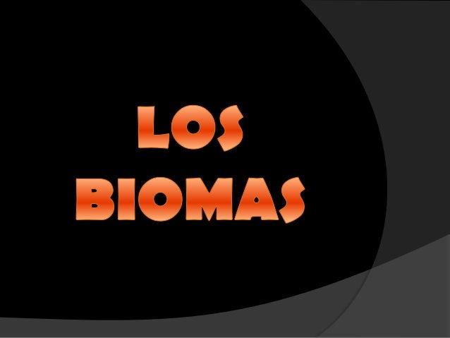 Los biomas (Selva)