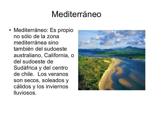 Mediterráneo ● Mediterráneo: Es propio no sólo de la zona mediterránea sino también del sudoeste australiano, California, ...