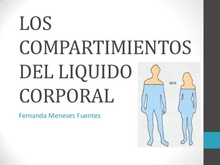 Los compartimientos del liquido corporal