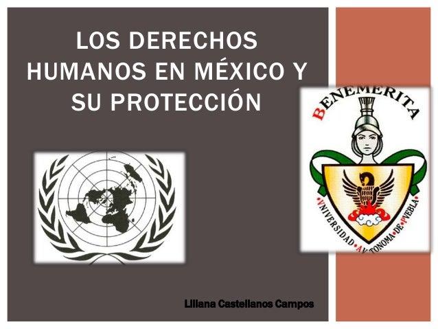 LOS DERECHOS HUMANOS EN MÉXICO Y SU PROTECCIÓN Liliana Castellanos Campos