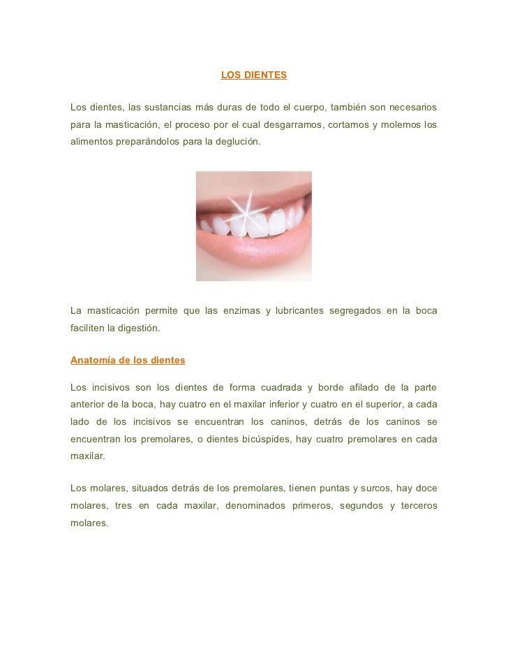 LOS DIENTESLos dientes, las sustancias más duras de todo el cuerpo, también son necesariospara la masticación, el proceso ...