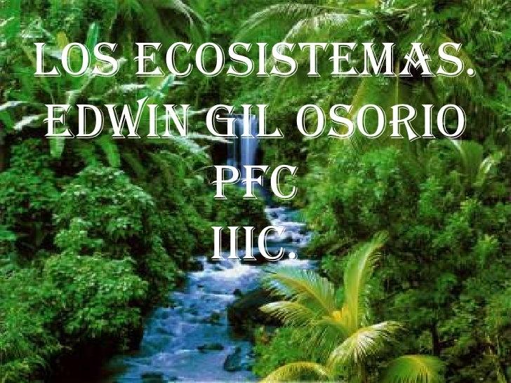 LOS ECOSISTEMAS.Edwin gil osorio       pfc      iiic.