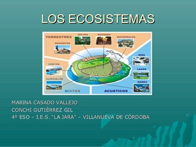 LOS ECOSISTEMASLOS ECOSISTEMASMARINA CASADO VALLEJOMARINA CASADO VALLEJOCONCHI GUTIÉRREZ GILCONCHI GUTIÉRREZ GIL4º ESO – I...