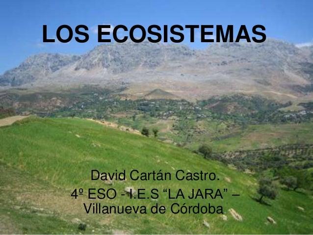"""LOS ECOSISTEMASDavid Cartán Castro.4º ESO - I.E.S """"LA JARA"""" –Villanueva de Córdoba."""