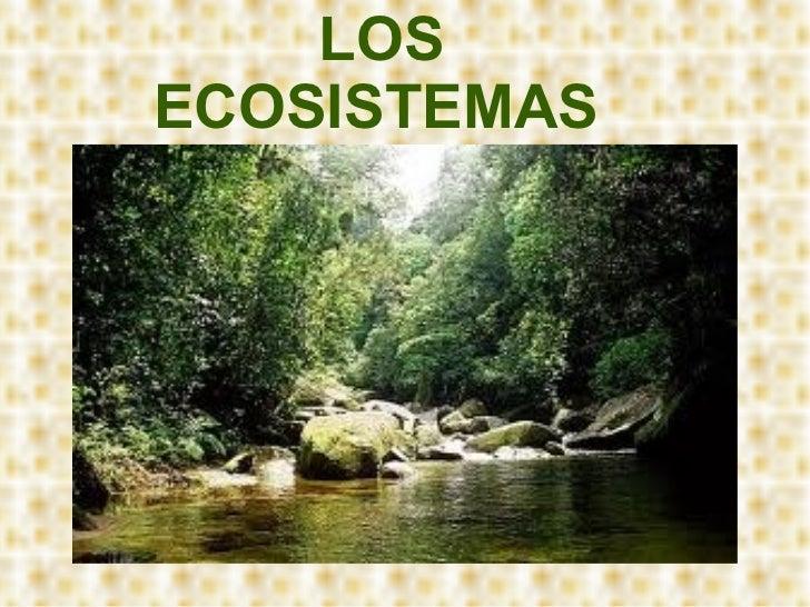 Los ecosistemas maria doloresmoreno