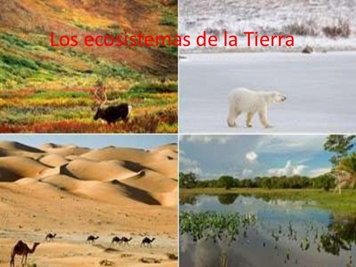 Los ecosistemas de la Tierra<br />