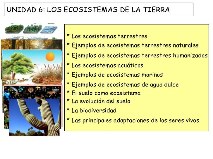 Los ecosistemas de la tierra 2012