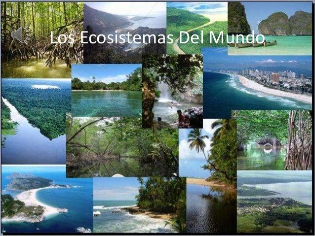 Los Ecosistemas Del Mundo