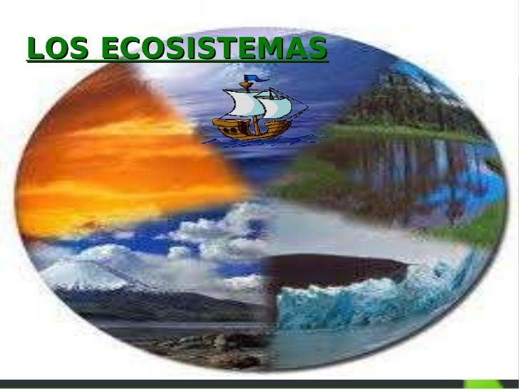 LOS ECOSISTEMAS- Laura O.