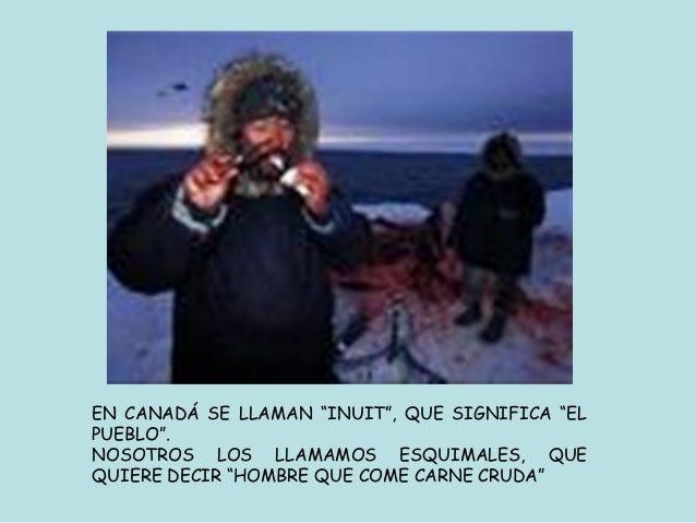 ASPECTO FÍSICO      LOS ESQUIMALES TIENEN LOS OJOS      ALMENDRADOS,.      SU ESTATURA ES CORTA IGUAL QUE      SUS EXTREMI...