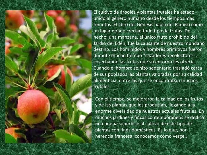 Los frutales area de agricola for Cuando se podan los arboles frutales