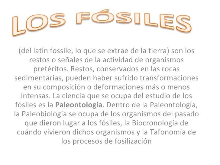 (del latín fossile, lo que se extrae de la tierra) son los restos o señales de la actividad de organismos pretéritos. Rest...