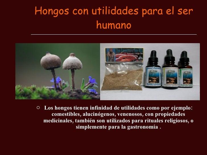 Si es posible rápidamente sanar el hongo de la uña