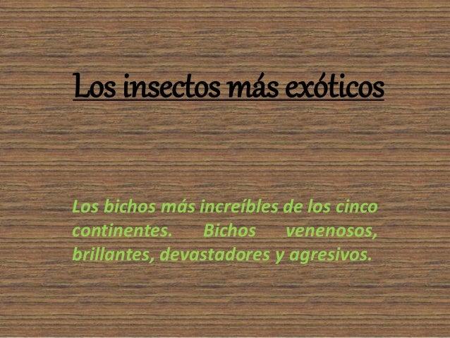 Los insectos más exóticos Los bichos más increíbles de los cinco continentes. Bichos venenosos, brillantes, devastadores y...