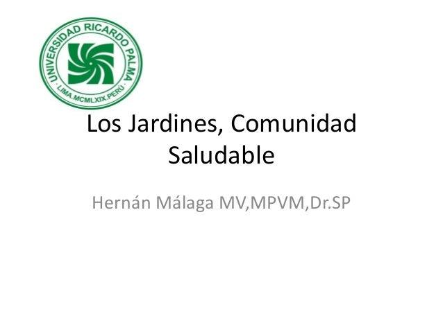 Los Jardines, Comunidad Saludable Hernán Málaga MV,MPVM,Dr.SP