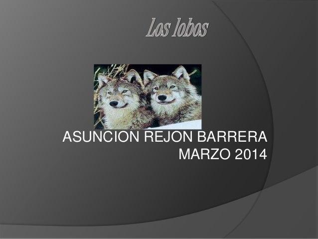 ASUNCION REJON BARRERA MARZO 2014